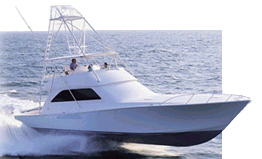 Specializing in Marine Surveys of Custom Sportfishing Yachts